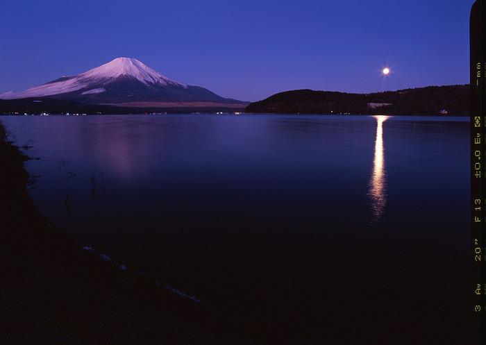 Yamanaka_2_m
