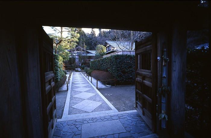 garden_3-m