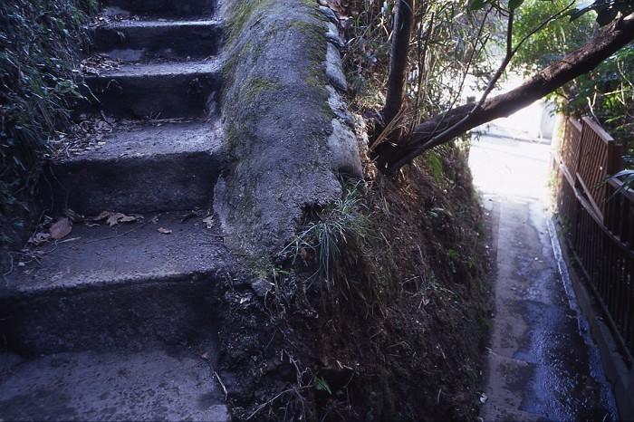steps-s