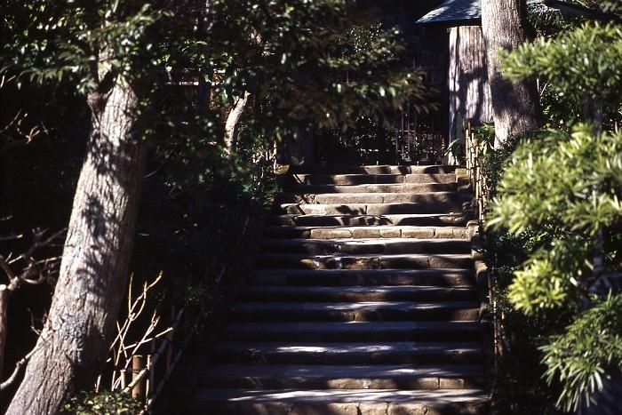steps_2-m